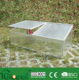 Estrutura frio das emissões para os jovens plantas cultivadas (C202)
