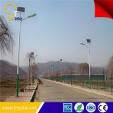 높은 Lumen Good Performance 6m 폴란드 36W Solar LED Street Light