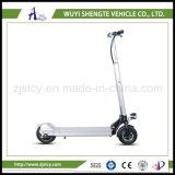 La Cina la maggior parte del motorino elettrico pieghevole sveglio e popolare St8001 di Shengte