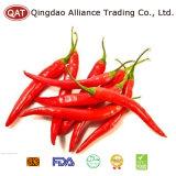 Nova Colheita de pimenta vermelha congelados 5-11cm