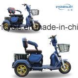 Motorino adulto della bici del triciclo del passeggero reso non valido 3 rotelle E in Cina