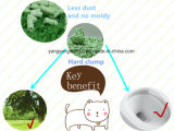 Lettiera del tofu del profumo del tè verde di qualità del rifornimento