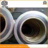 Guarnizione della ferita di spirale della grafite del metallo; Materiale di sigillamento caldo della Cina di vendite, guarnizioni a spirale della ferita per le flange del tubo