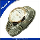 方法自動機械ステンレス鋼の男性用腕時計Psd-2878