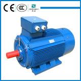 Motor de indução assured da gaiola de esquilo da série do preço justo Y2 da qualidade