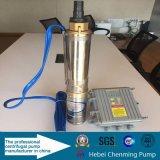 Jardin solaire automatique de pompe à eau de haute performance