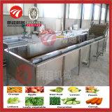 Máquina de lavar da bolha da fruta, máquina de lavagem vegetal da limpeza