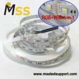 Stock de fábrica tienen la tira de LED SMD impermeables 5050 TIRA DE LEDS RGBW