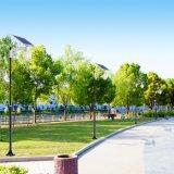 Персиковый солнечной энергии на светодиодные индикаторы1 с ручкой в Китае