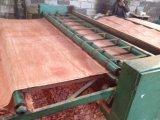 Corte giratório 0.28 milímetros de folheado natural de Bintangor da fábrica de Linyi