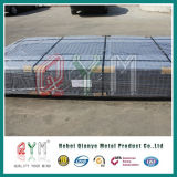 La gabbia di uccello ha galvanizzato la rete metallica saldata Rolls per costruzione