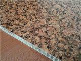 Piedra textura de panal paneles Los paneles de pared