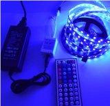 DC24V 5050 SMD 2 Streifen-Installationssatz der Jahr-Garantie-60LED/M RGB LED