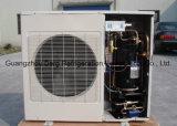 Copeland à haute densité Compressor Thick Polyurethane Panel Walk dans Freezer