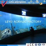 Grand guichet en verre acrylique incurvé de tailles importantes dans des aquariums d'océan