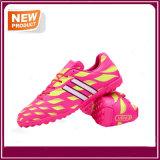 人のスポーツの運動連続した屋内はサッカーの靴をひもで締める