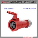IEC60309 3pin hembra de la industria del conector / 16A Connector / 32A Connector