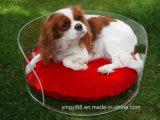 Base de acrílico cuadrada Yyb-0313 del animal doméstico de la base de sofá del perro