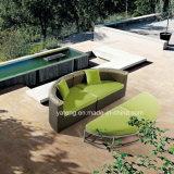 Insieme reale esterno del sofà della mobilia del patio del giardino dei tesori del giardino