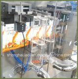Macchina imballatrice di riempimento del sacchetto della polvere automatica del detersivo liquido