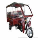 証拠が付いている大人の乗客の貨物小屋3の車輪モーター三輪車