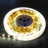 고품질 유연한 LED 지구 SMD5730 60LEDs/M