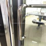 Gesundheitliche Ware-Aluminiumfeld, das Dusche-Bildschirm (H007B, schiebt)