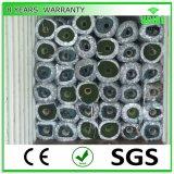 Gazon artificiel pour la décoration de jardin