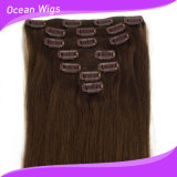 100%の人間Virgin Hair Extension、ブラジルのVirgin Hair、Hair ExtentionのClip