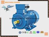 Y2 0.75kw 1.5kw 5.5kw 7.5kw Serien-Dreiphaseninduktions-Motor