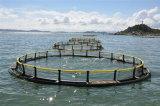 Cage de flottement de pêche de la cage de poissons/HDPE/PE en mer profonde