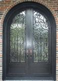 Внешняя шикарная декоративная двойная дверь утюга обеспеченностью