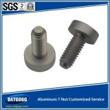 Aluminium T Nut mit Customized Service