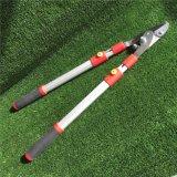 Le jardin Pruner/cisailles/a modifié des outils de Pruner/Gargen