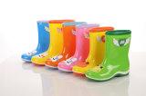 De Laarzen van de Regen van pvc van China, de Populaire Schoenen van de Regen van het Jonge geitje van de Stijl, de Transparante Laarzen van het Jonge geitje hallo-Q, de Populaire Laarzen van het Kind, Laars van de Regen van de Kinderen van de Mode de Transparante