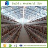 Конструкция сарая цыплятины стальной структуры света этапа низкой стоимости алюминиевая