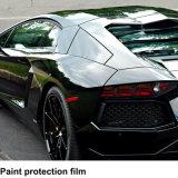 Pellicola di protezione della vernice della colla di qualità di Ppf 3m forte per l'anti graffiatura 1.52*15m dell'automobile