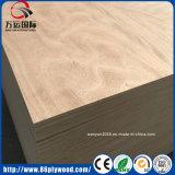 Le faisceau WBP de peuplier et d'eucalyptus imperméabilisent le contre-plaqué marin pour des meubles