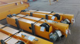Grua elétrica usando o transporte com a SGS