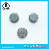 Magnete unipolare del disco del singolo neodimio su ordinazione del polo da vendere