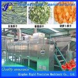Drogende Machine van de Groente van het Fruit Machiery van de Riem van het voedsel de Drogere