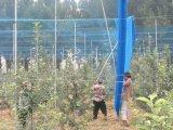 Compensation en plastique d'oiseau de protection agricole anti