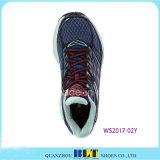 Ботинки цветастого спорта идущие с связью
