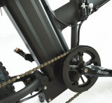 折る20inch脂肪質のタイヤの電気バイク48V 500W