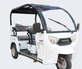 Mejor barata triciclo motorizado utiliza Electric Trikes para adultos