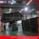 Transportband van de Zijwand van de Norm van ISO de Golf