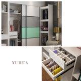 普及した寝室の家具全家のカスタマイズのスライド式ワードローブ (YH-51)