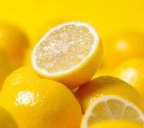 معمل مقتطف 90-98% ضخمة برتقالين مسحوق [كس] رفض 520-26-3