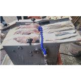 魚ピーラー/イカの魚の皮は機械を除去する皮を取除く
