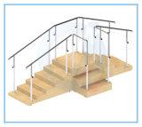 Escaliers de formation de soins de santé de réadaptation de physiothérapie avec la plate-forme